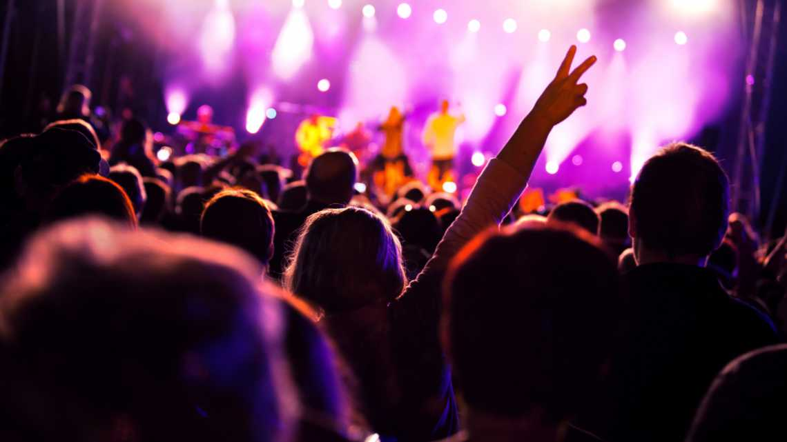 People having fun on music concert and/or disco