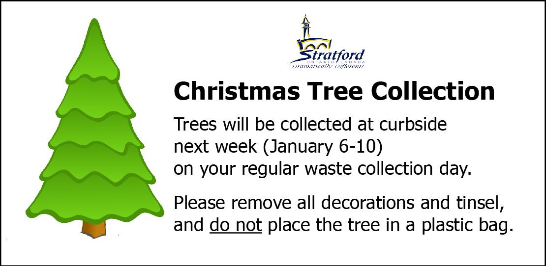 Stratford Ontario Christmas 2020 Christmas trees being picked up next week in Stratford   My